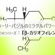 ホーリーバジルの含有成分であるβ-カリオフィレン
